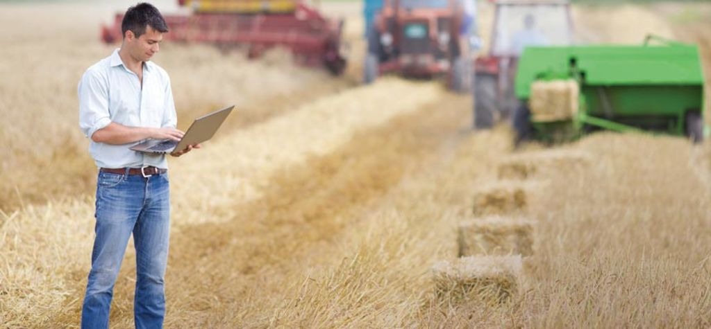 BlockGrain goes blockchain in Australian Ag first