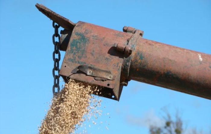 Grain exports leap in Vic