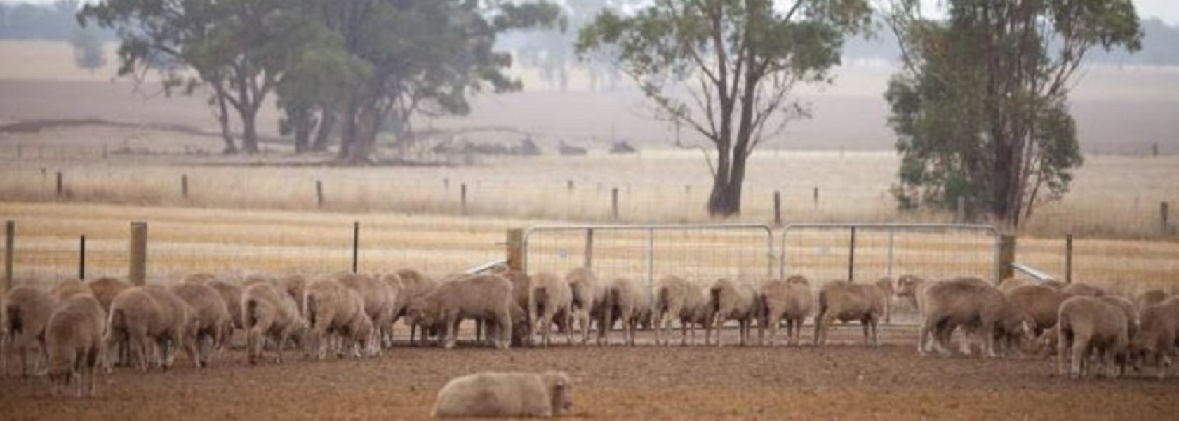 Drought support boosted in Victoria