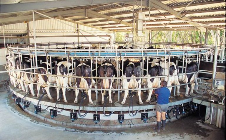 The age of reform has dawned for dairy