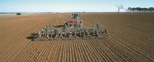 Producers holding back on dry sowing