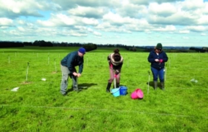 Tailor-made nitrogen plans for dairy farms