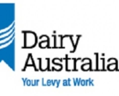 Dairy scholarship launched