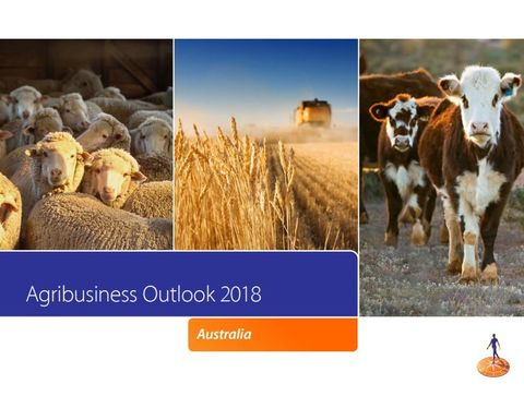 New food and agriculture appointment for Rabobank