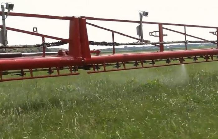 Clever camera technology helps weed control