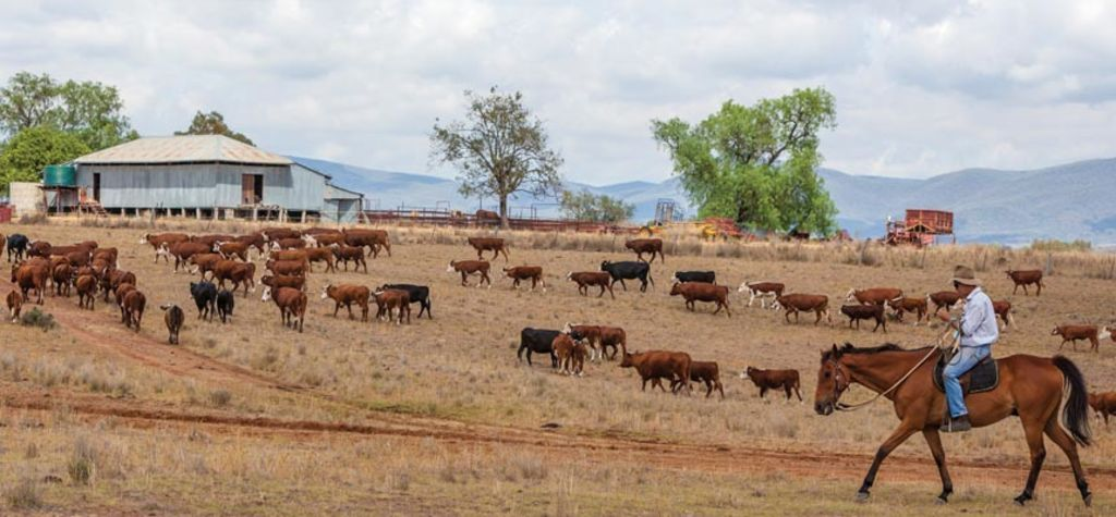 Aussie beef exports lift in May
