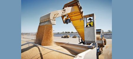 New market for Western Australian barley