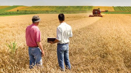 Scholarships open to grain growers
