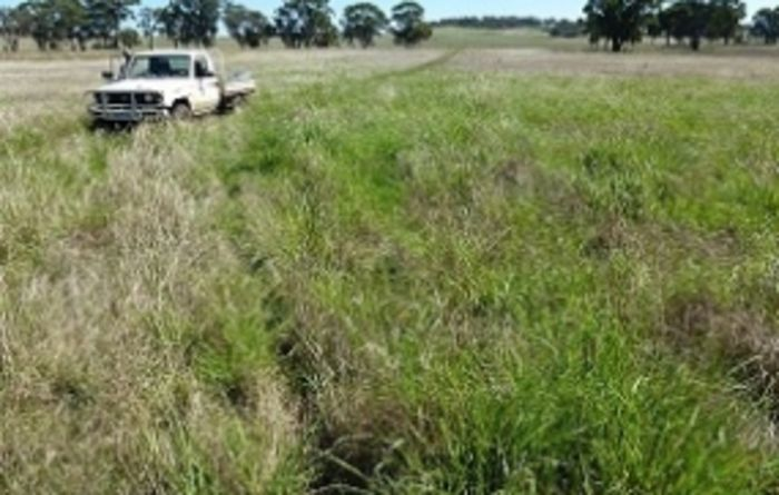 WA government to change land clearing rules