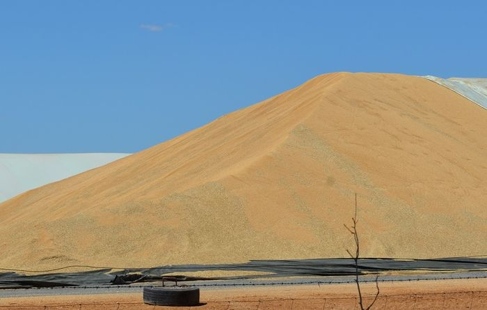 South Australian final crop estimate rises slightly