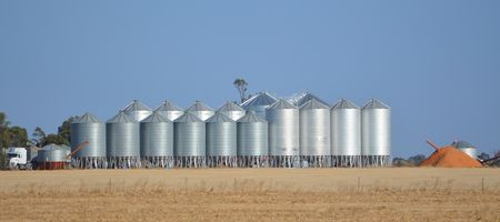 Managing high moisture grain at harvest