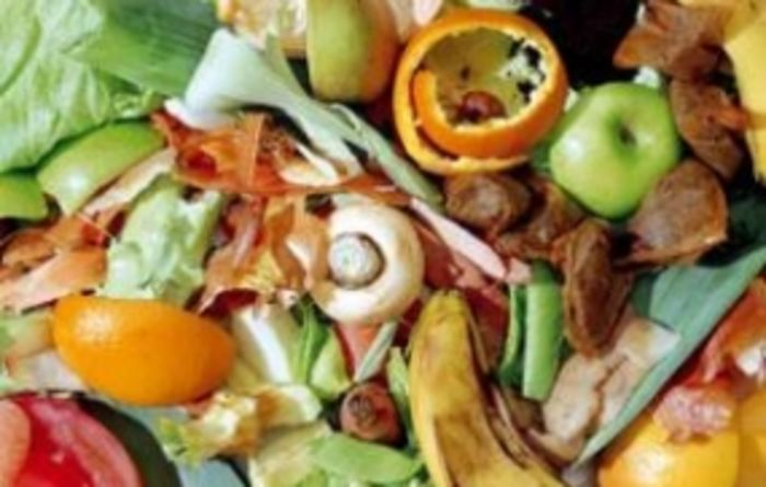 Billions could be fed if food wastage was curbed
