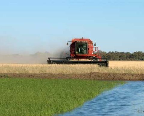 Murray Darling Basin Plan gets bipartisan support