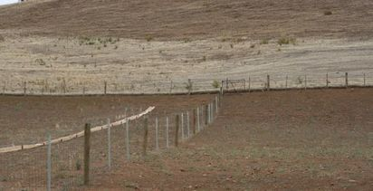 $310 million boost to New South Wales drought assistance