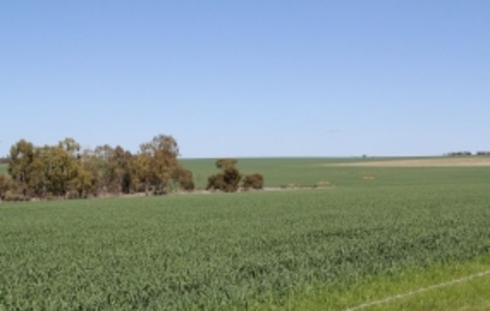 Farm energy efficiency and innovation lands in Griffith