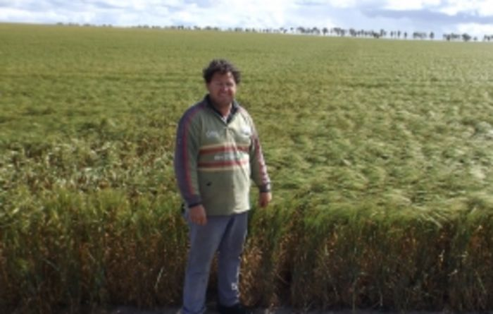 Hard-seeded legumes the talk of spring field days
