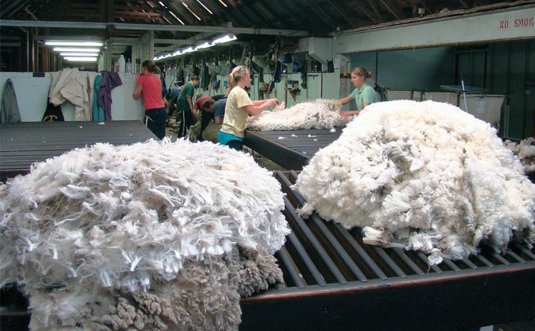 Will positive economic growth improve retail wool sales?