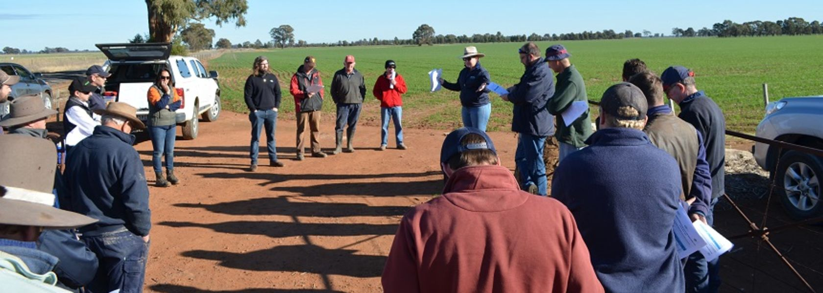 Stubble and frost research proves its worth