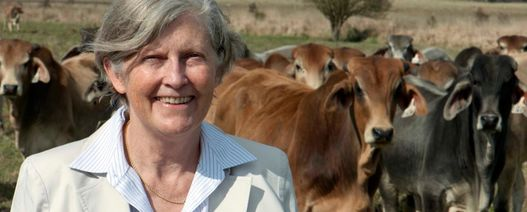 African project may deliver Aussie insights