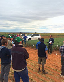 Research Report: National Variety Trials