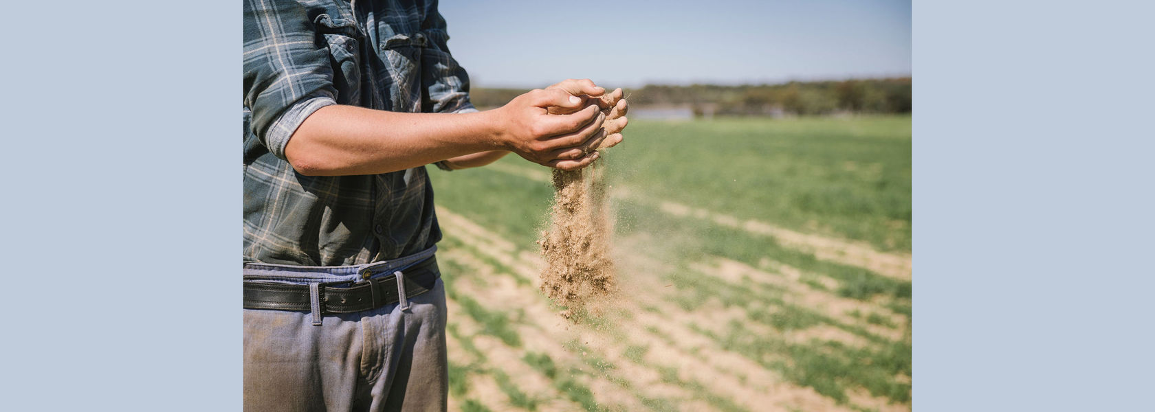 Soil research backed by peak grain body