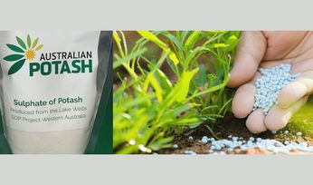 Australian Potash to take part in two-year trial in WA