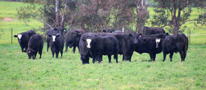 Bloat risk increases as seasonal conditions improve