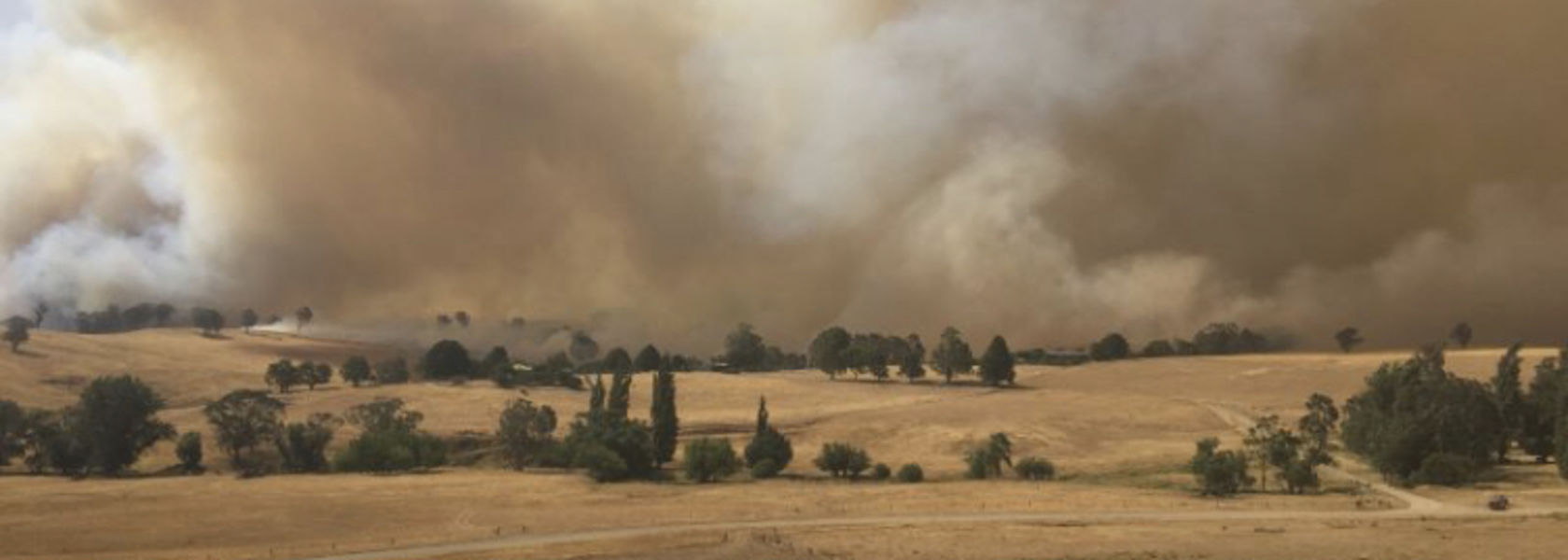 Fire preparation should include plans for livestock