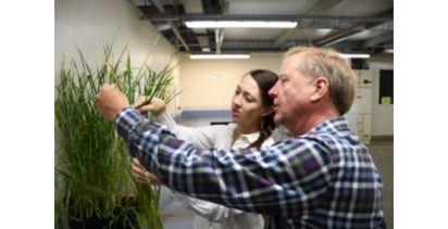 New form of fungicide resistance identified