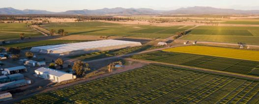 $12 million agricultural research centre to be established at Narrabri