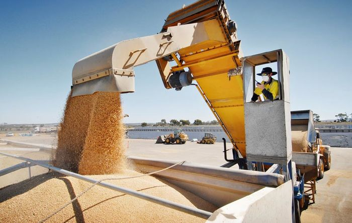 WAFarmers welcomes harvest grain transparency