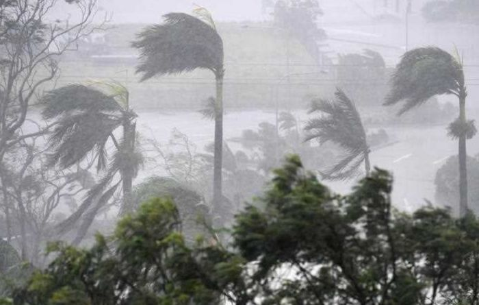 Qld farmers left reeling after Cyclone Debbie