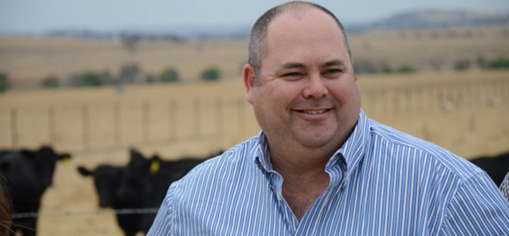 Cattle Council boss to step down