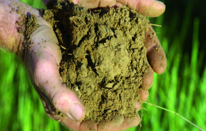 Improve soils to boost ag by $2.1B