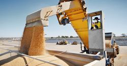 Grain cooperative reports $128m surplus