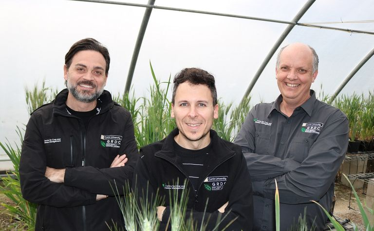 Researchers tackle fungicide resistance