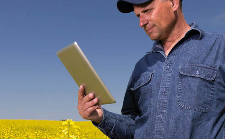ABARES launches Insights into Australian agriculture