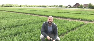 Research debunks wheat myth