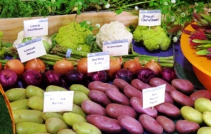 Vegetables tipped to trend in 2014 forecast