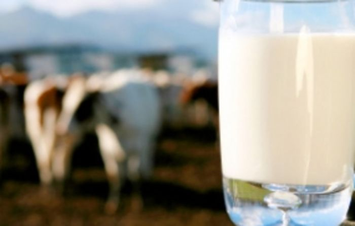 Cautious welcome of Coles dairy fund