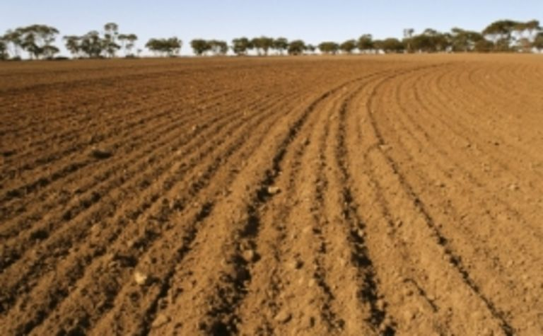 Australian to chair plant treaty body