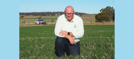 Rural businesses merge to deliver agronomy services