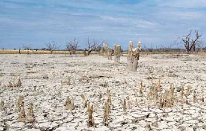 Salinity research could alleviate major farming issue