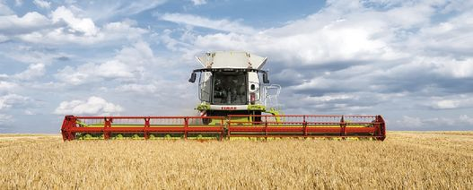 Think about harvest costs differently