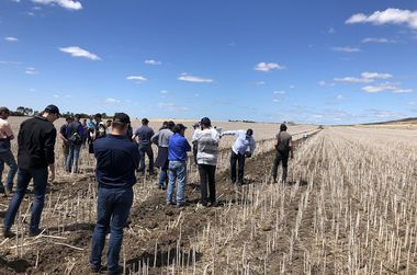 Controlled Traffic Farming conference dives into the dirt