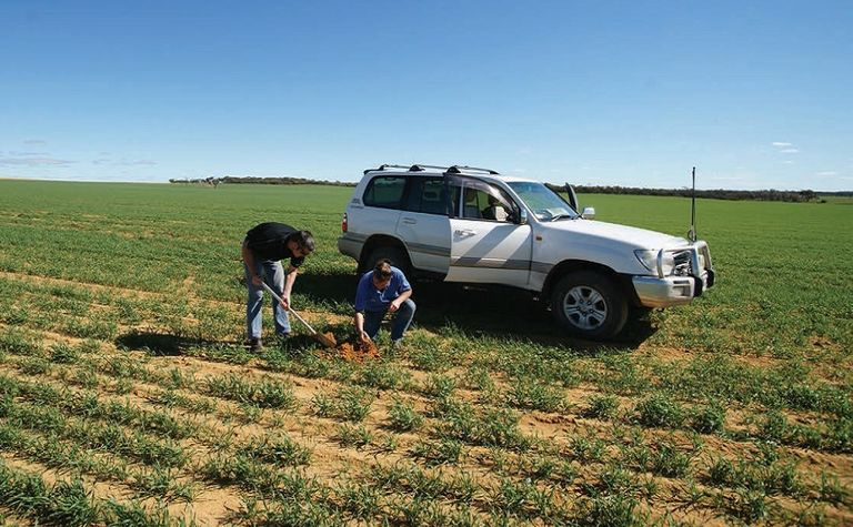 Tips and tools for mapping in VRT crop input and management systems