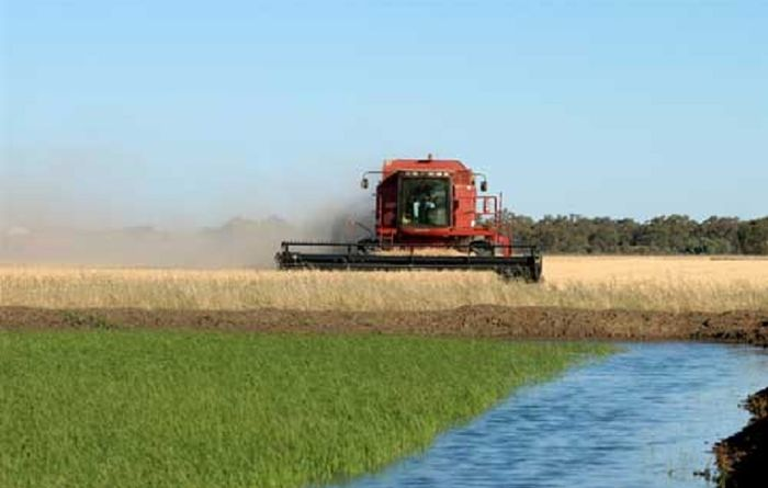 Murray Darling Basin plans will hurt Queensland communities: ag groups