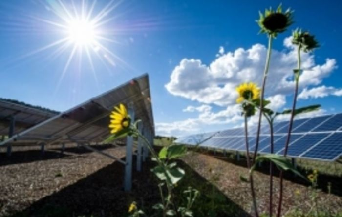 Renewable energy calculator to help farm businesses