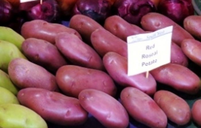 McCain lets potato growers down: AUSVEG