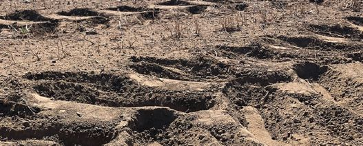 Farmers dig in for free soil tests